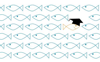 Designed to… attract graduates