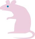 I am a rat!
